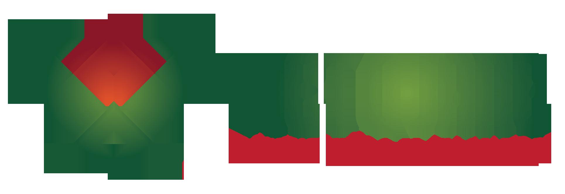Kiến trúc xây dựng Việt Quang